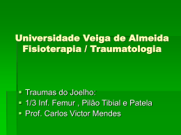 universidade veiga de almeida traumatologia fisioterapia