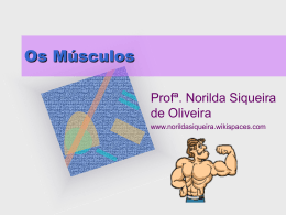 Os Músculos - norildasiqueira