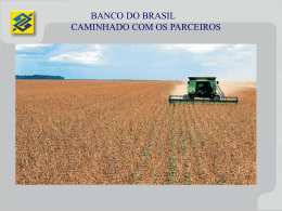 Bco do Brasil - caminhando com os parceiros