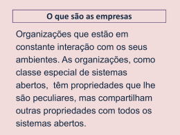 Aula 3_O que são empresas - Professor Bona Marketing e