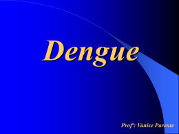 Dengue - Capital Social Sul