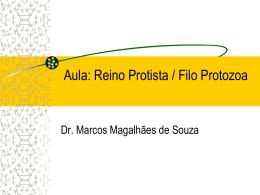 182359140414_Protista