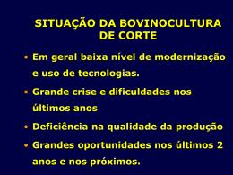 Situação da Bovinocultura de Corte (Power Point)