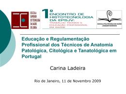 Educação e Regulamentação Profissional dos Técnicos