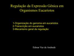 Mecanismo Geral de Regulação em Organismos Eucarióticos