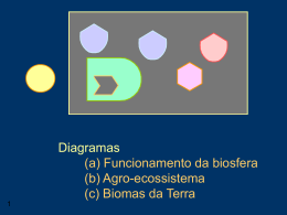 Elaboração do diagrama da Biosfera