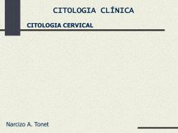 citologia cervical