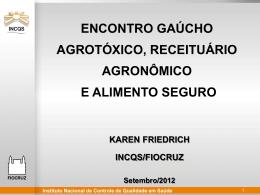 Dra. Karen Friedrich - Doutora em Saúde Pública - Crea-RS