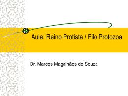 180358160413_Protista