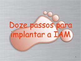 Doze passos para a implantação da IAM