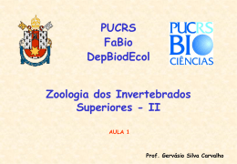 01.03 - PUCRS