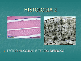 Histologia Animal 2 - Colégio Machado de Assis
