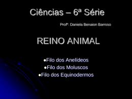 anelideos_moluscos_e_equinodermos