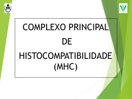 MHC - UFRGS