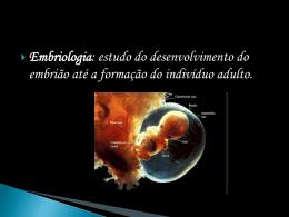 óvulos centrolécitos