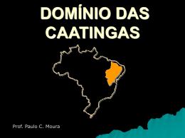 O DOMÍNIO DAS CAATINGAS