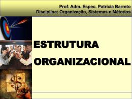 CONCEITO BÁSICO DE ESTRUTURA ORGANIZACIONAL