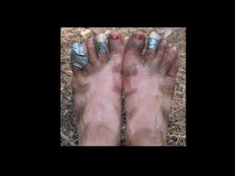 pés formosos! (powerpoint)