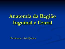 Anatomia da Região Inguinal e Crural