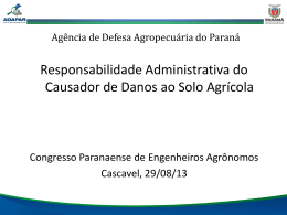 RESPONSABILIDADE ADMINISTRATIVA DO CAUSADOR DE