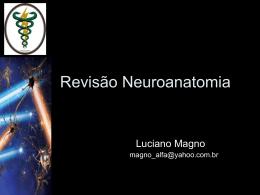 revisao-neuroanatomia