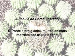 porco-espinho1 (10)