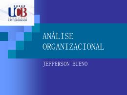 ANÁLISE ORGANIZACIONAL - Universidade Castelo Branco