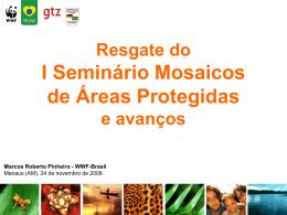 Resgate do I Seminário Mosaicos de Áreas Protegidas