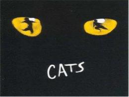 CATS - Yimg