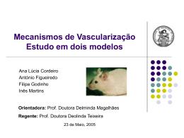 Mecanismos de Vascularização Estudo em dois modelos
