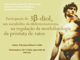 Próstata - Universidade Federal de Minas Gerais