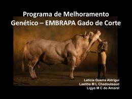 Programa de Melhoramento Genético – EMBRAPA Gado de Corte
