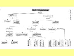 Estrutura e dinâmica da geosfera