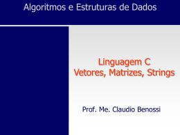 Vetor[-1] - Prof. Ms. Claudio Benossi