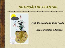 1.1 - Nutricao de Plantas