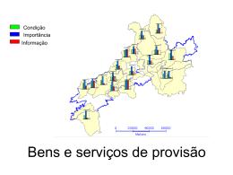 Veja os resultados gerais da percepção sobre os bens e serviços