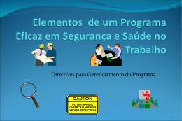 Diretrizes Programa de Saúde e Segurança do Trabalho