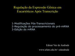 Mecanismos Pós-Transcricionais Regulação em Eucariotos