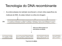 clonagem_e_dna_recombinante