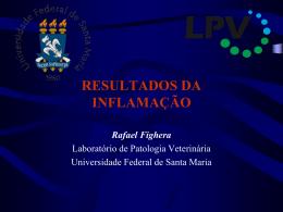 avaliação laboratorial e patológica de casos