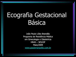 Ecografia gestacional básica