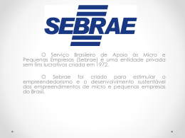 SEBRAE - WordPress.com