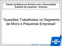 sebrae/unicamp
