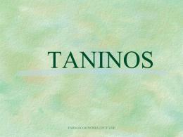 Taninos - Stoa Social