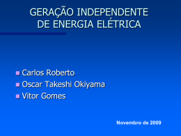 Produtor Independente de Energia Elétrica (PIE)