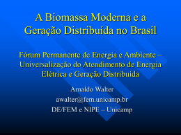 A Biomassa Moderna e a Geração Distribuída no Brasil Forum