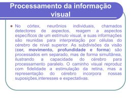 Processamento da informação visual