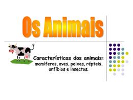 Características dos animais
