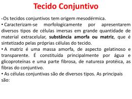 Tecido Conjuntivo.