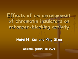 Effects of cis arrangement of chromatin insulators on